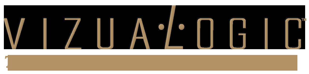 Vizualogic Logo copy